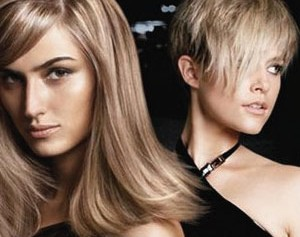 cut-colour-salon-hair-dresser-simcoe-norfolk